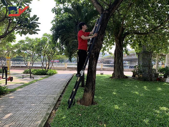 Thang nhôm rút đôi DIY TL-AI-50B